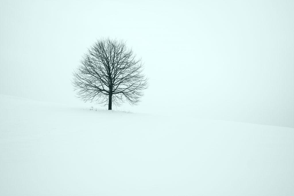Prosinec- December má viacero významov.